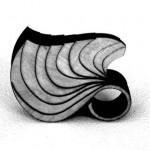 I gioielli di legno di Anthony Roussel